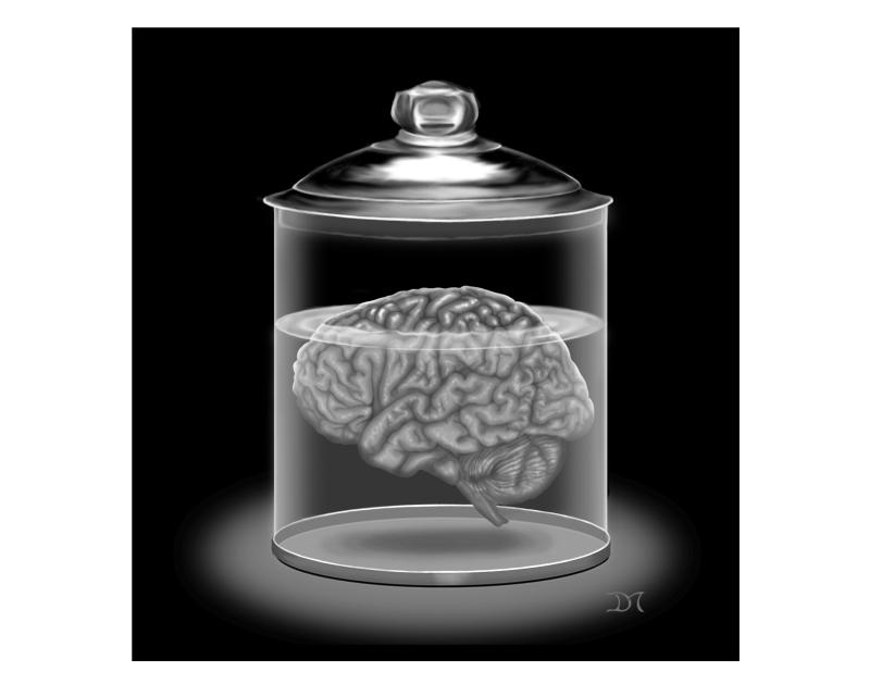 Jarred Brain